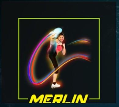 Merlin Fits Kodi Addon